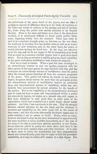 Image of Darwin-F401-1876-121