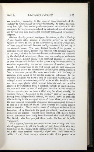 Image of Darwin-F401-1876-125