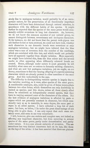Image of Darwin-F401-1876-127