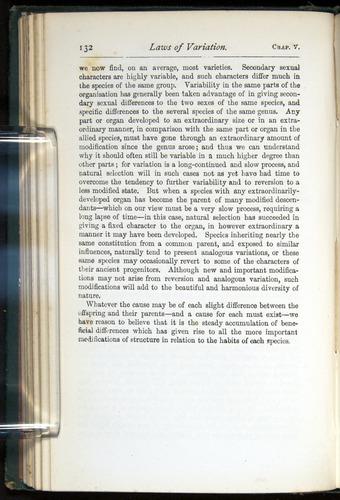 Image of Darwin-F401-1876-132