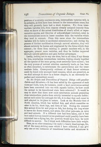 Image of Darwin-F401-1876-138