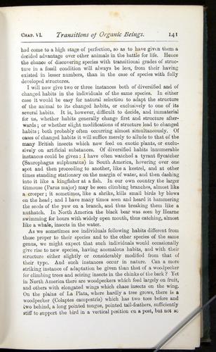 Image of Darwin-F401-1876-141