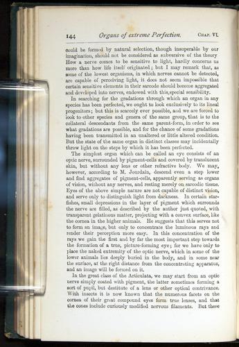Image of Darwin-F401-1876-144