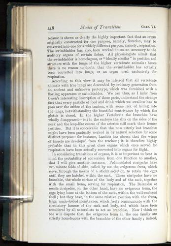 Image of Darwin-F401-1876-148