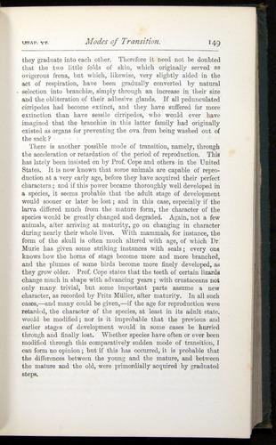 Image of Darwin-F401-1876-149