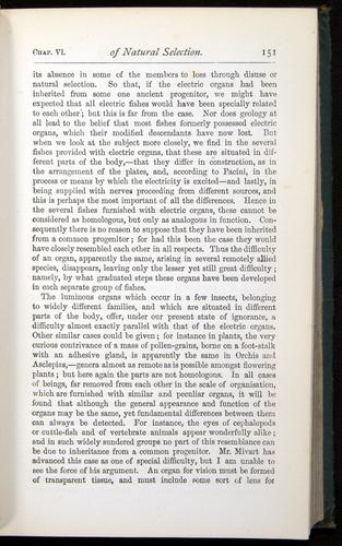 Image of Darwin-F401-1876-151