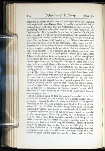 Image of Darwin-F401-1876-152