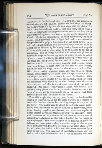 Image of Darwin-F401-1876-154