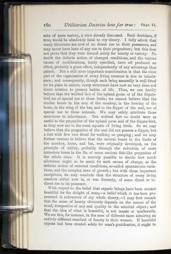 Image of Darwin-F401-1876-160