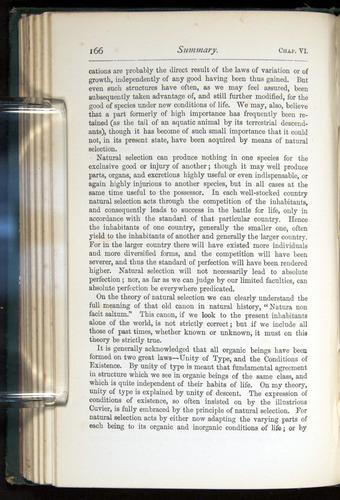 Image of Darwin-F401-1876-166