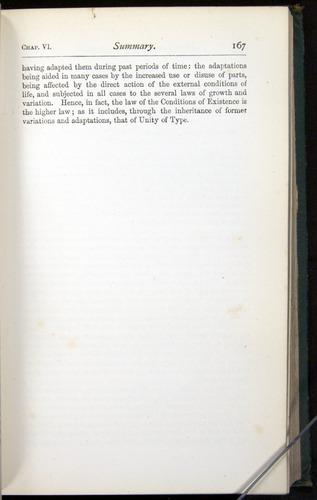 Image of Darwin-F401-1876-167