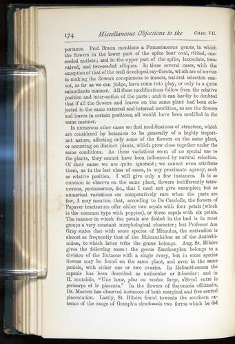 Image of Darwin-F401-1876-174