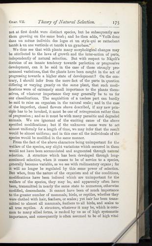 Image of Darwin-F401-1876-175