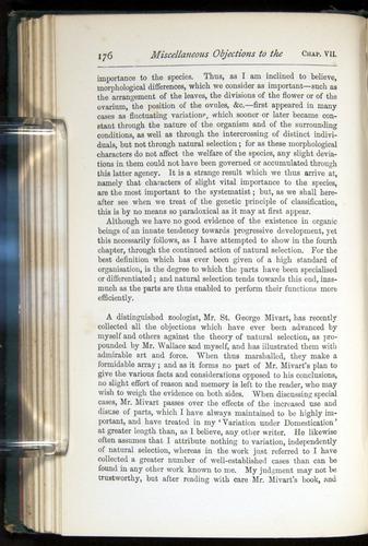 Image of Darwin-F401-1876-176