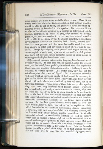 Image of Darwin-F401-1876-180