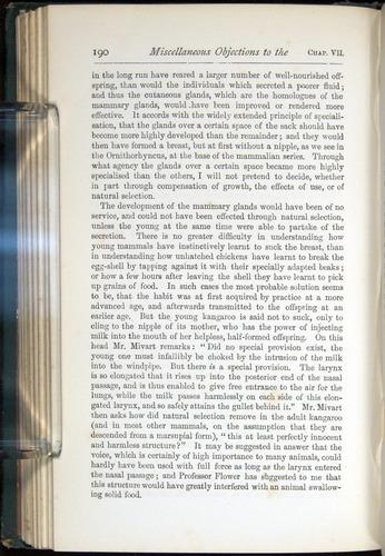 Image of Darwin-F401-1876-190