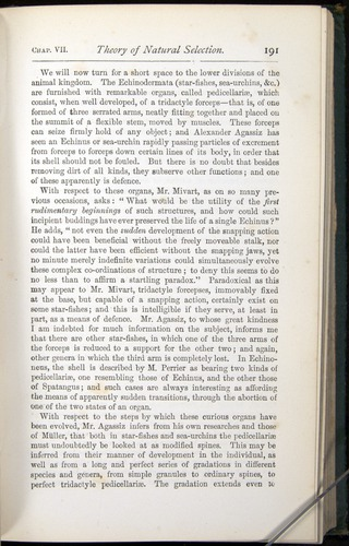 Image of Darwin-F401-1876-191