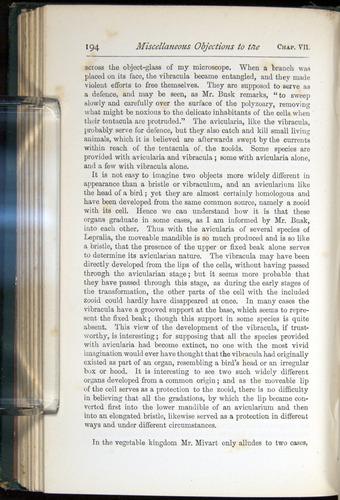 Image of Darwin-F401-1876-194