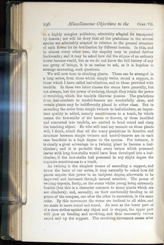 Image of Darwin-F401-1876-196