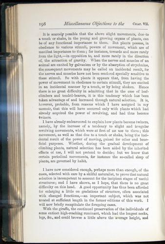 Image of Darwin-F401-1876-198