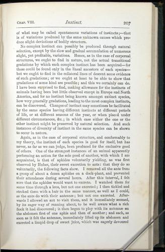 Image of Darwin-F401-1876-207