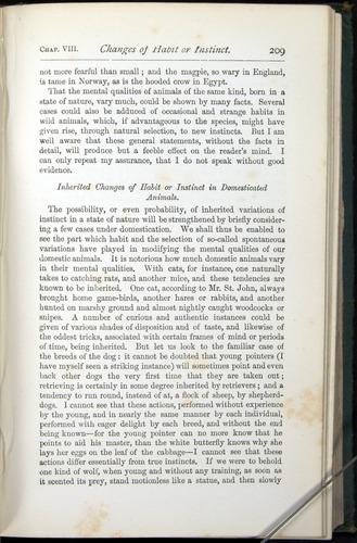 Image of Darwin-F401-1876-209