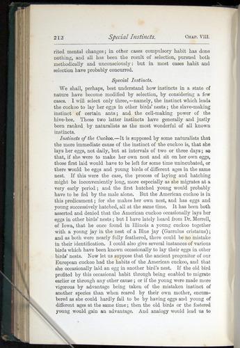 Image of Darwin-F401-1876-212