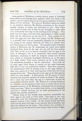 Image of Darwin-F401-1876-215