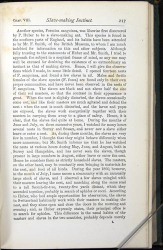 Image of Darwin-F401-1876-217