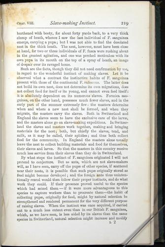 Image of Darwin-F401-1876-219