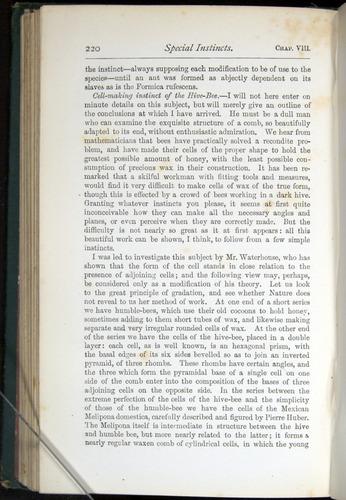 Image of Darwin-F401-1876-220