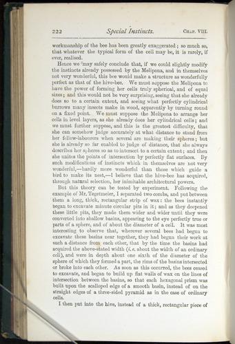 Image of Darwin-F401-1876-222