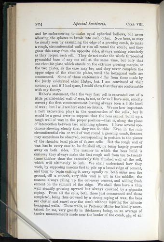 Image of Darwin-F401-1876-224