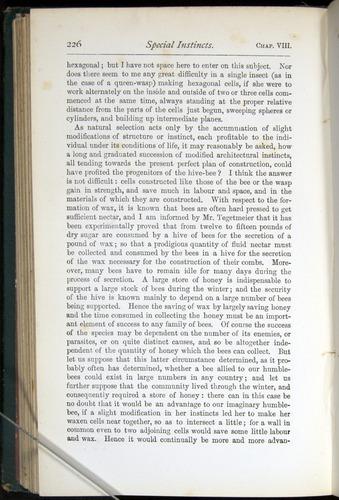 Image of Darwin-F401-1876-226