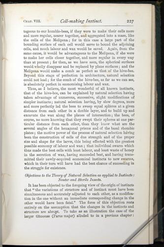 Image of Darwin-F401-1876-227