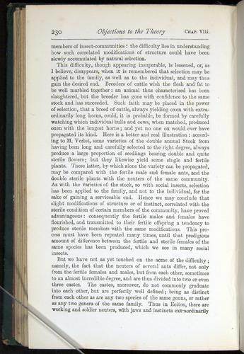 Image of Darwin-F401-1876-230