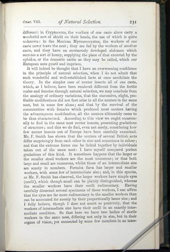 Image of Darwin-F401-1876-231