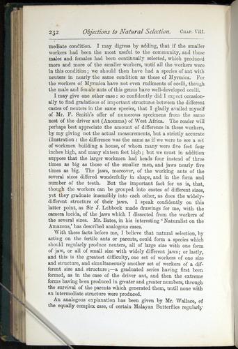 Image of Darwin-F401-1876-232