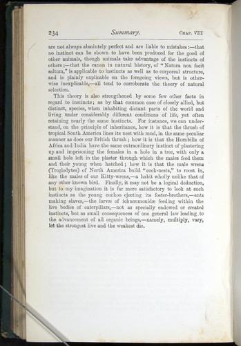 Image of Darwin-F401-1876-234