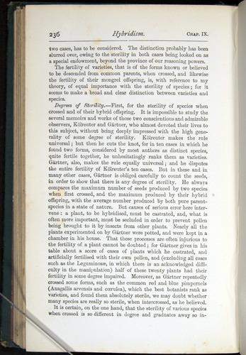 Image of Darwin-F401-1876-236