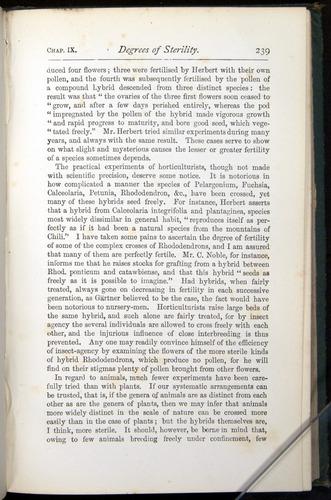 Image of Darwin-F401-1876-239