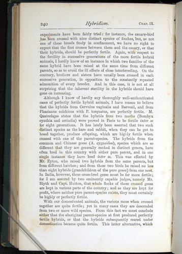 Image of Darwin-F401-1876-240