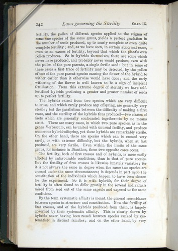 Image of Darwin-F401-1876-242