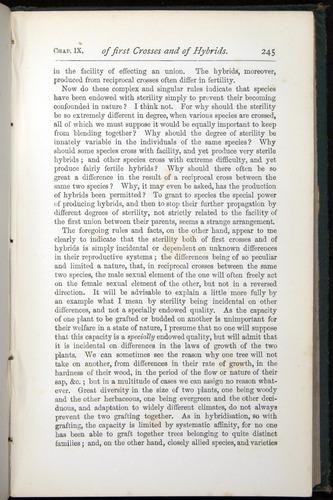 Image of Darwin-F401-1876-245
