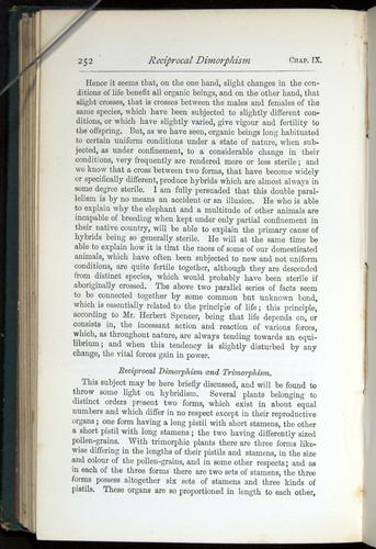 Image of Darwin-F401-1876-252