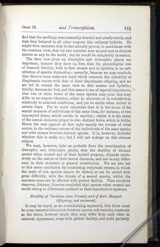 Image of Darwin-F401-1876-255