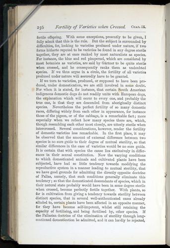 Image of Darwin-F401-1876-256