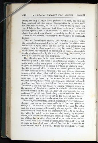 Image of Darwin-F401-1876-258