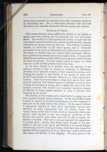 Image of Darwin-F401-1876-262