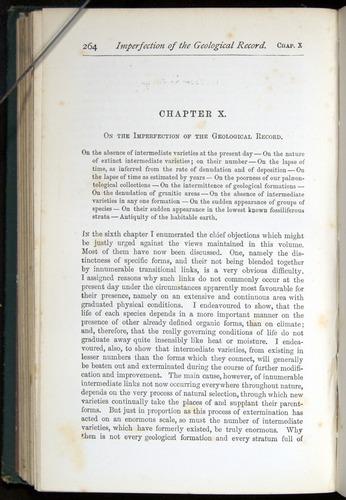 Image of Darwin-F401-1876-264